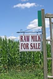 Raw Milk For Sale