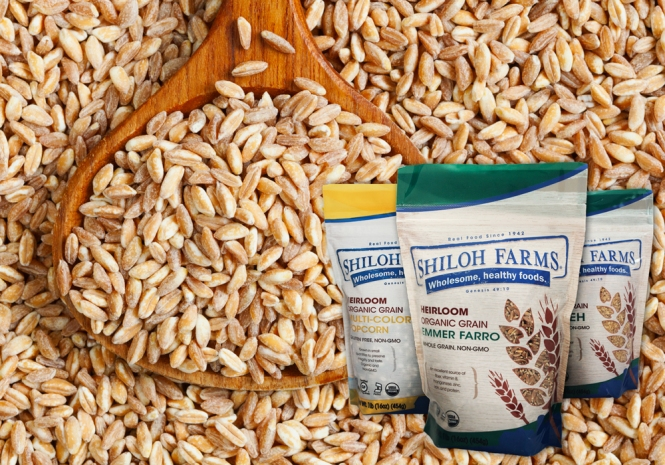 Shiloh Farms Heirloom Grains
