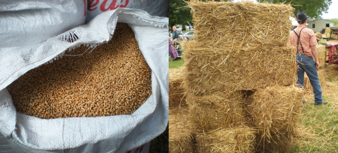 The Finished Product - Wheat Berries & Straw